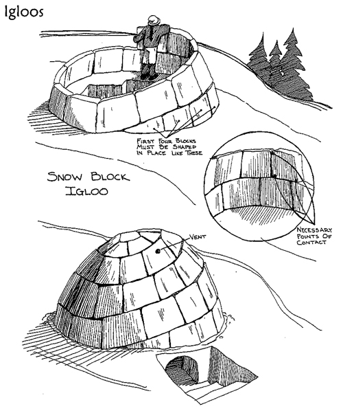 Snow Caves And Igloos For Winter Outdoor Adventures