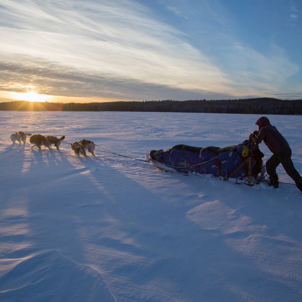 Boundary Waters Dog Sledding & Texas Big Bend Leadership Semester
