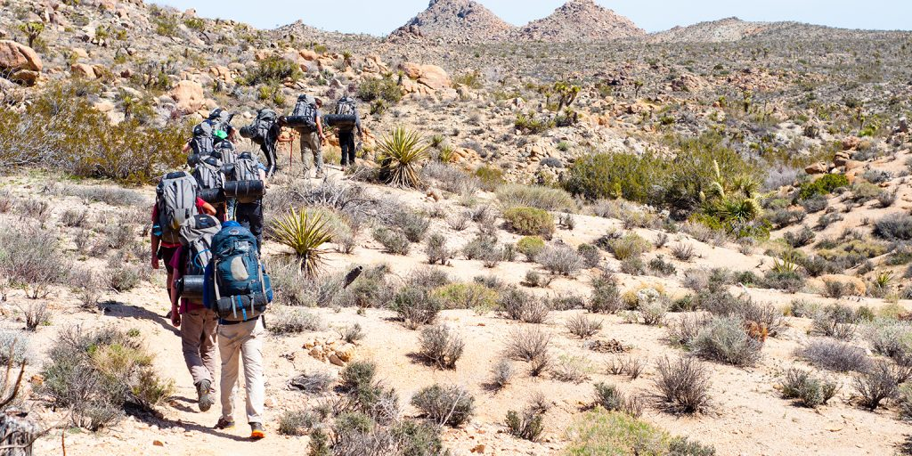 Photo taken on a Joshua Tree Backpacking & Rock Climbing for Adults expedition.