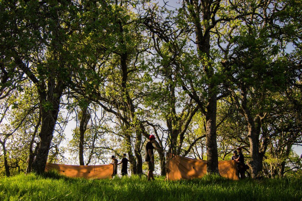 tents, outdoor gear