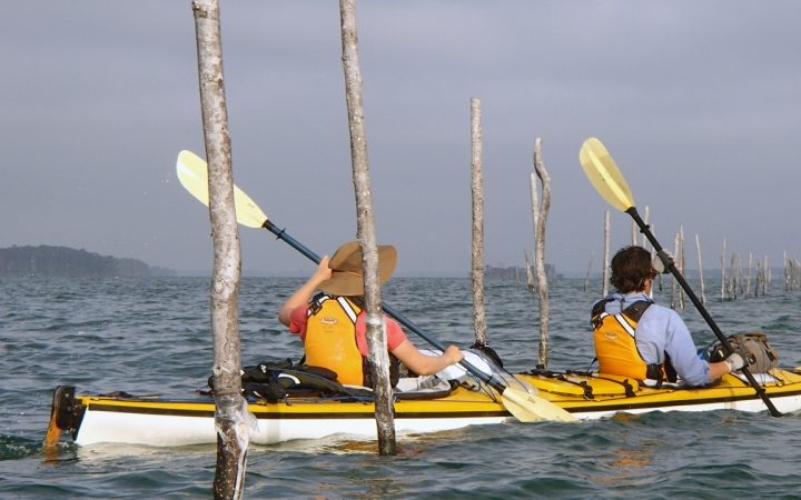 sea kayaking adventures