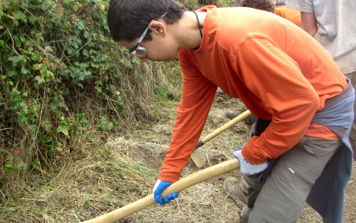 service learning for teens
