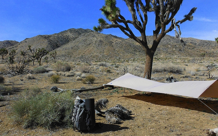 camping in Joshua Tree