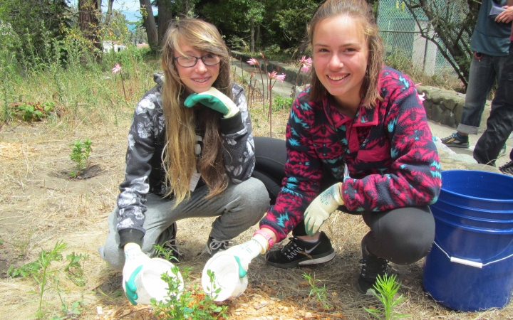 summer volunteer program for teens