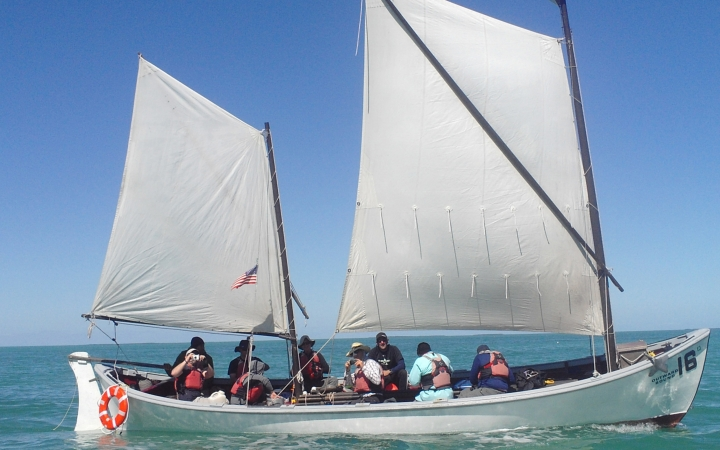 adults escape on sailing course in florida