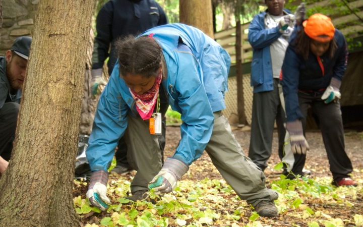 teens engage in service learning