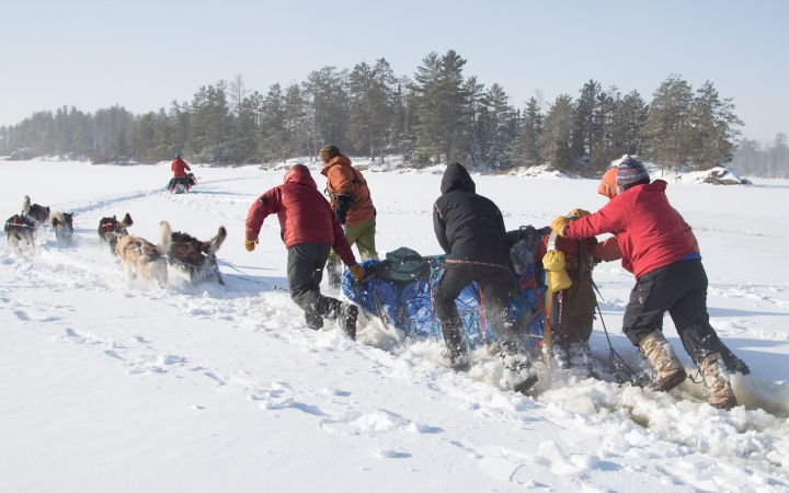 learn how to dog sled in the boundary waters