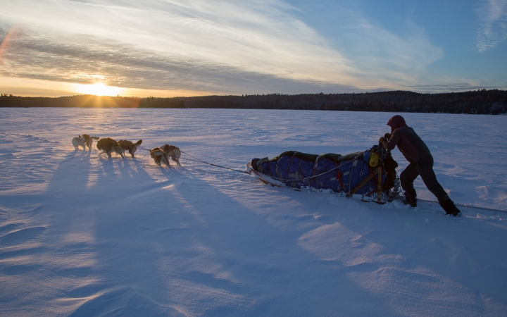 boundary waters dog sledding adventure for young adults