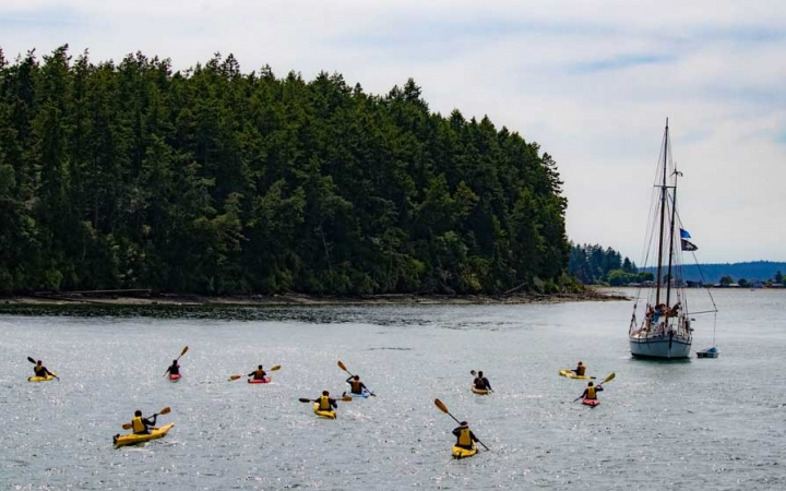 group sea kayaking