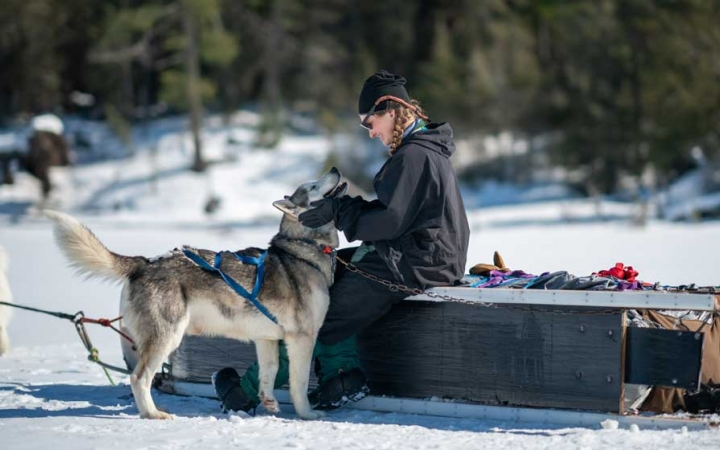boundary waters dog sledding lessons