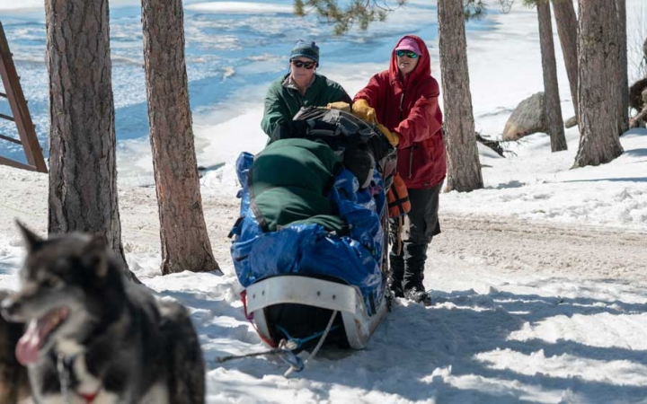 adult dog sledding trip in minnesota