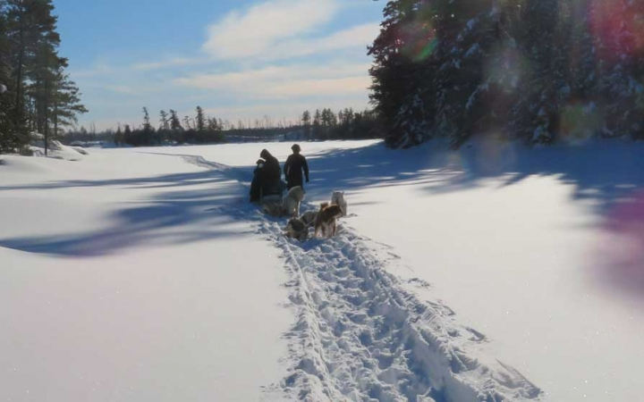 dog sled course in minnesota
