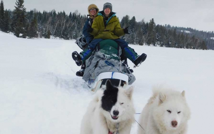 group dog sled trip for young adults